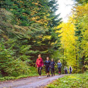 Cztery kobiety w strojach sportowych idą z kijkami po leśnej drodze.