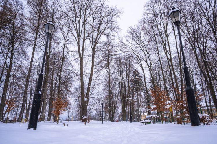 Park zimową porą, na pierwszym planie dwie czarne latarnie