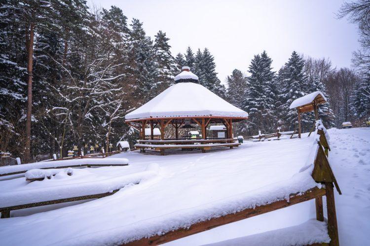 Wiata w lesie pokryta grubą warstwą świeżego śniegu